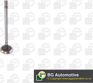 BGA V611982 - Izplūdes vārsts interparts.lv